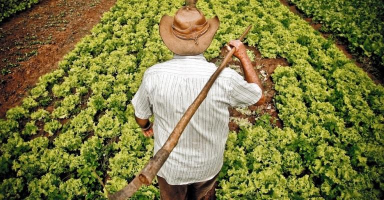 Adesão ao Refis Rural é prorrogada para 30 de outubro
