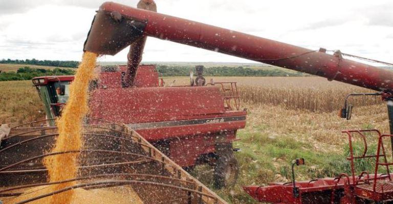 Produção de grãos deve crescer 2,1%, diz Conab