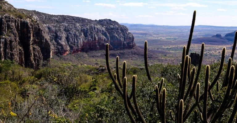 Cerrado e Caatinga como Patrimônio Nacional