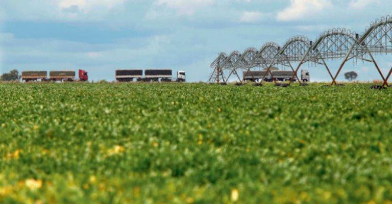 Governo libera R$ 693 milhões para o Programa de Seguro Rural em 2021