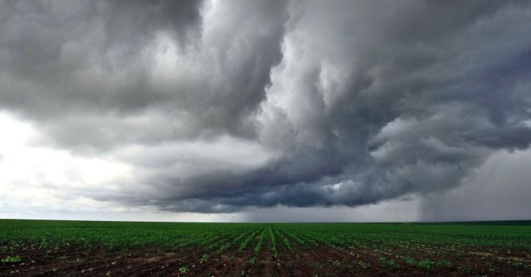 Estimativa da safra de grãos cai 1,2%, para 254 milhões de toneladas