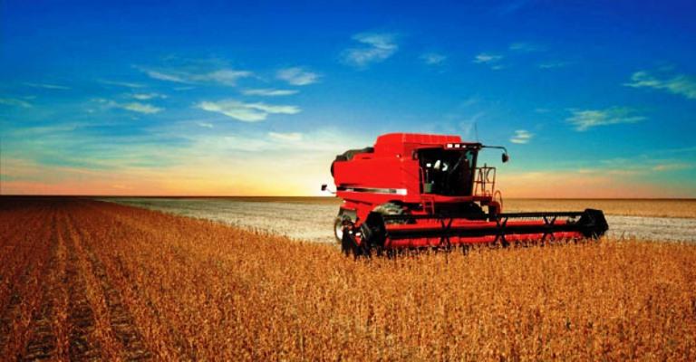 Produção de grãos cresce 5,7% e chega a 271,7 milhões de toneladas