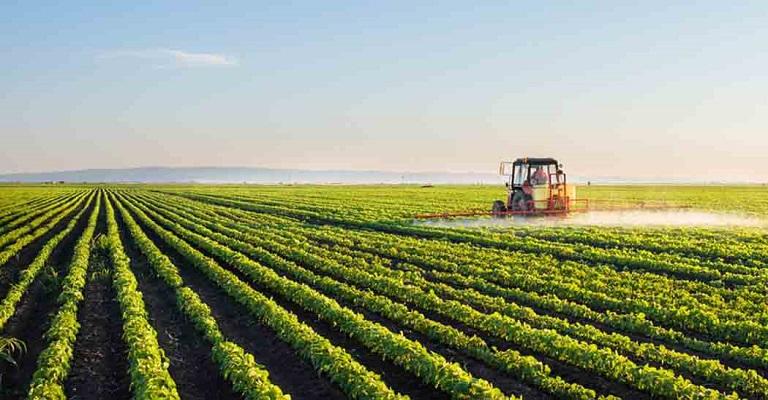 Brasil possui mais de 300 startups para o setor de agropecuária