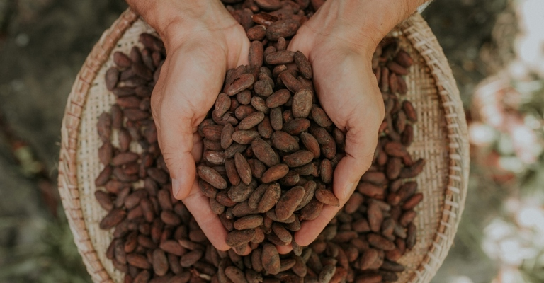 São Paulo será palco da maior feira de chocolate do Brasil