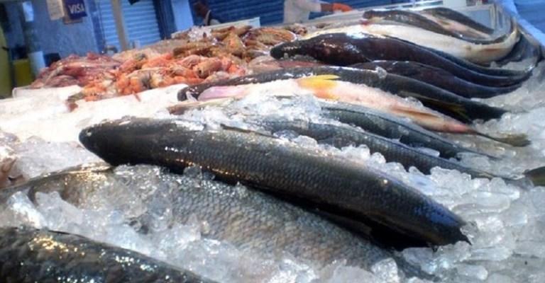 Como escolher o peixe certo para sua mesa?
