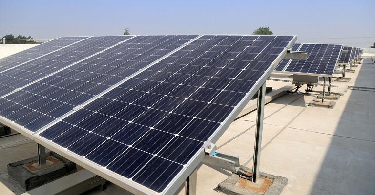 Padarias de Minas implantam energia fotovoltaica para reduzir custos