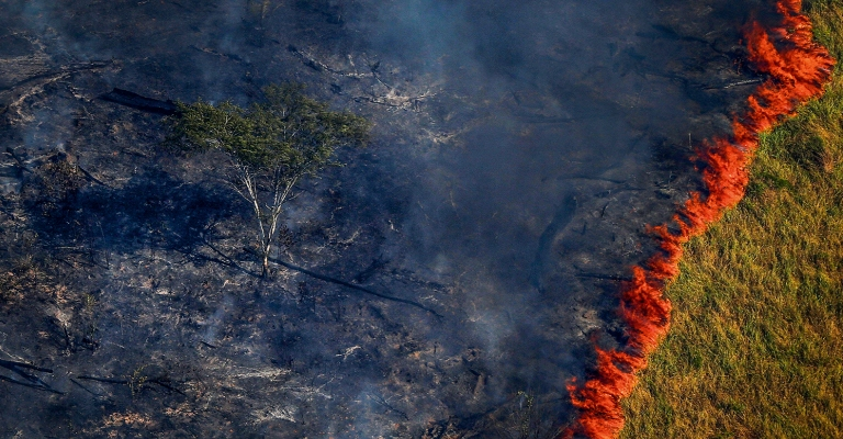 Desmatamento na Amazônia elevou emissões de carbono do Brasil em 9,6% em 2019