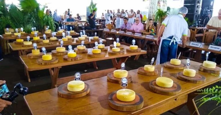 Minas será sede de concurso internacional de queijos