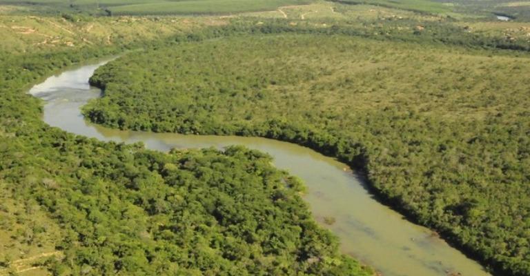 Pesquisa estuda a biodiversidade nos ecossistemas de água doce