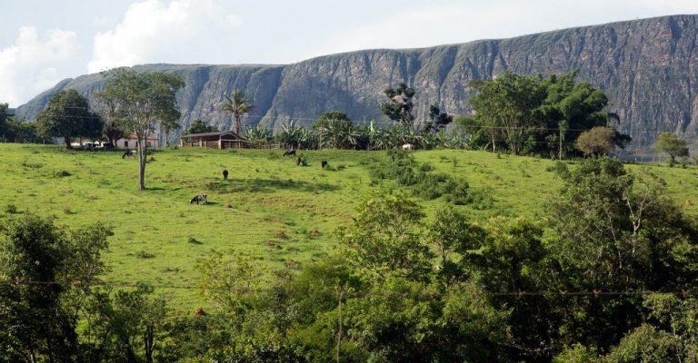 IEF repassa benefício do Bolsa Verde em Minas Gerais