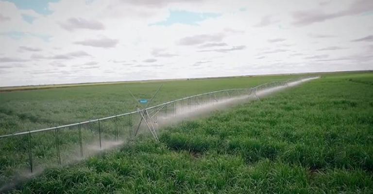 Eficiência hídrica no agronegócio