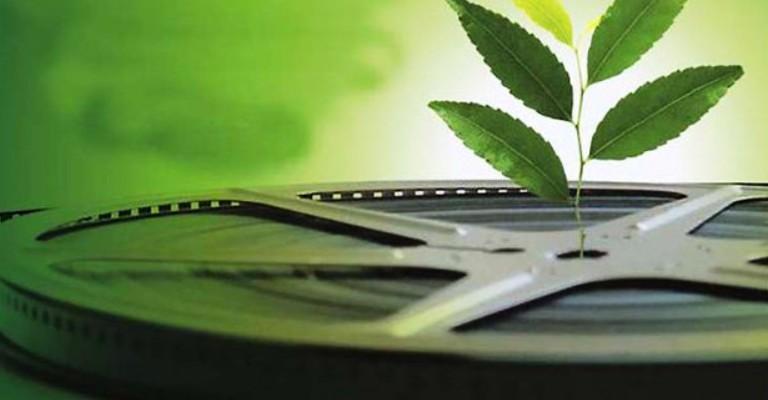 Festival Internacional de Filmes Ambientais celebra dez anos com edição online
