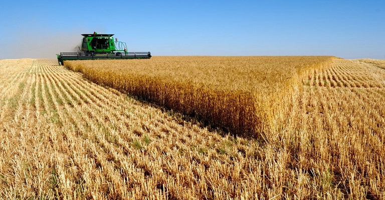 Exportações do agronegócio cresceram 4,8% em setembro, puxadas pelo açúcar