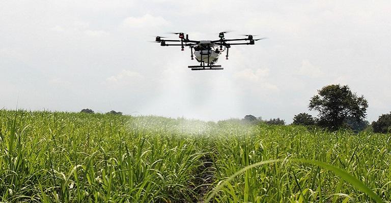 IoT no campo: como a tecnologia está ajudando a revolucionar o agronegócio