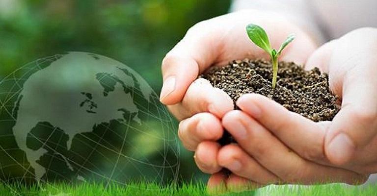 Por que precisamos de educação ambiental nas escolas?