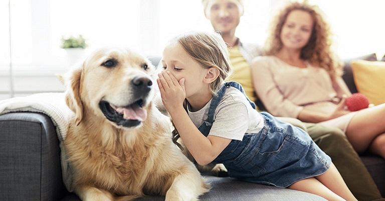 Cachorros entendem os seus donos, diz pesquisa
