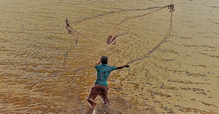 Mais de 700 licenças de pescadores são suspensas em dez estados e no DF