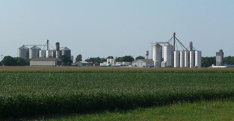 Avaliação econômico-financeira é essencial para os negócios de produtores e agroindústrias