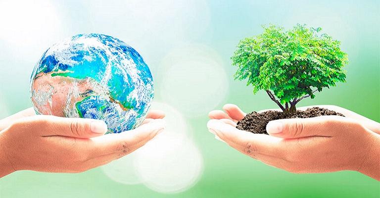 Dia Mundial da Terra exige olhar para os ecossistemas locais e nossa rotina