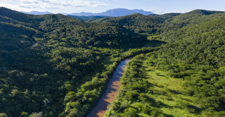 Plataforma virtual permite navegar pelo Rio Doce