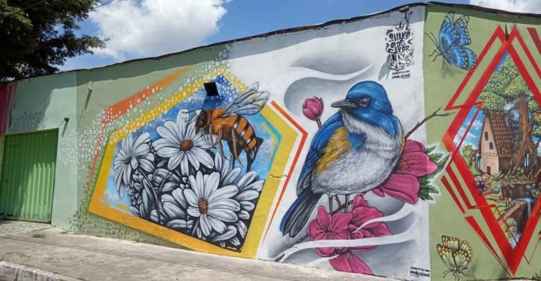 Grafiteiro Snake faz exposição virtual