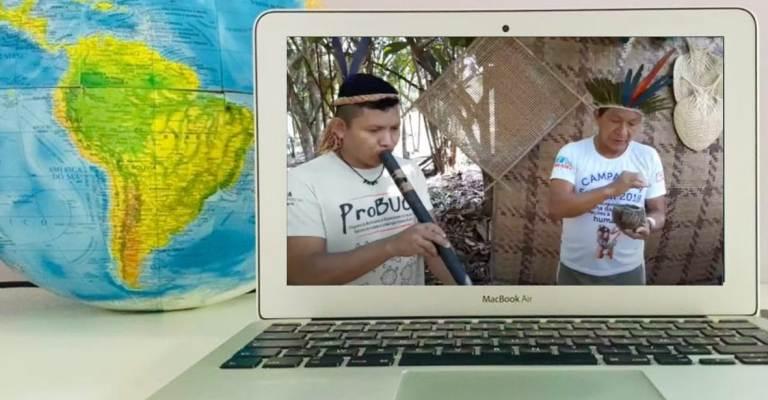Indígenas criam visitação on-line na Amazônia