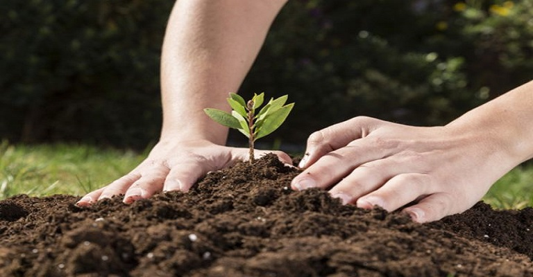 Política ambiental é decisiva para o País