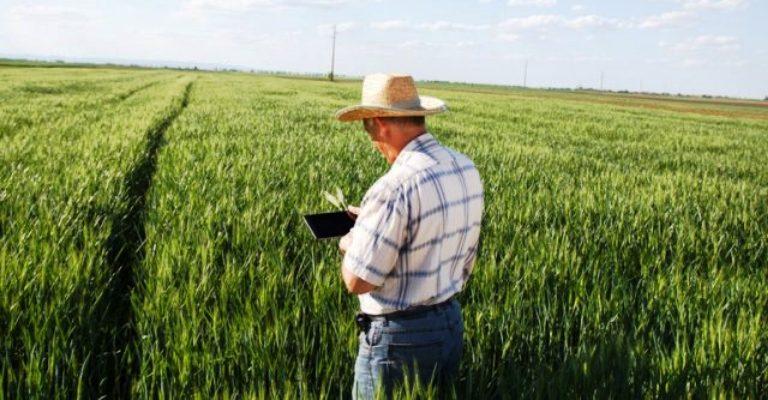 Internet no campo pode elevar produção agropecuária em até R$ 100 bi