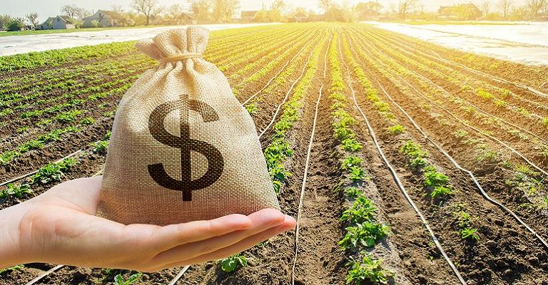 O agro e o mercado de techs