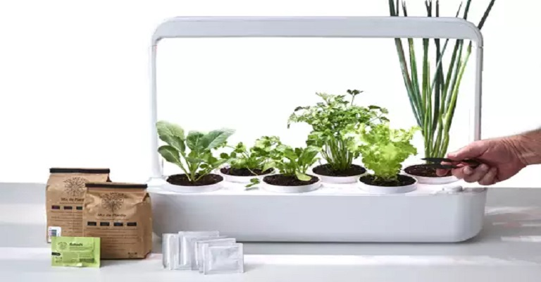 Startup de agricultura urbana lança horta inteligente