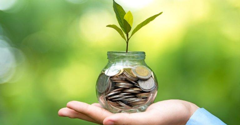 Brasil pode gerar até US$100bi em receitas de créditos de carbono até 2030