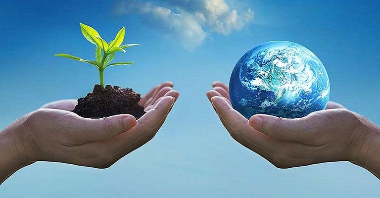 Importância da COP 26 para o Brasil e o setor privado
