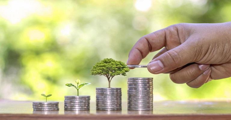 Economia verde: como ter um negócio sustentável